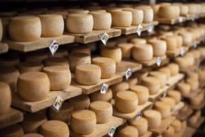 Maturation process of cheese LA Banquets